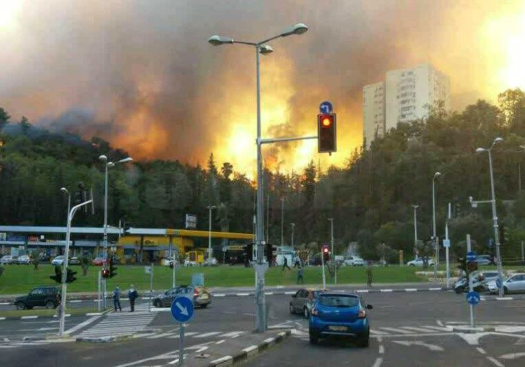 Feuer in Haifa, 24. November 2016. (Foto: AVSHALOM SASSONI, Jerusalem Post)